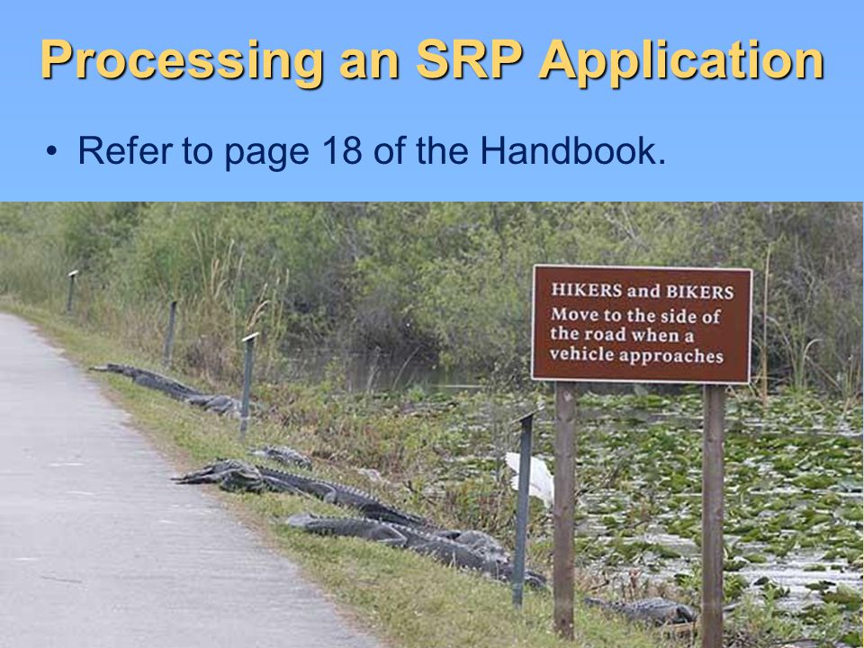 Processing an SRP Application