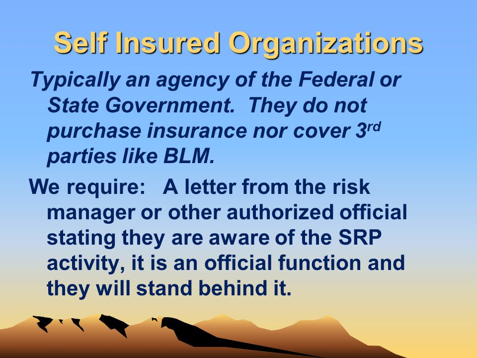 Self Insured Organizations