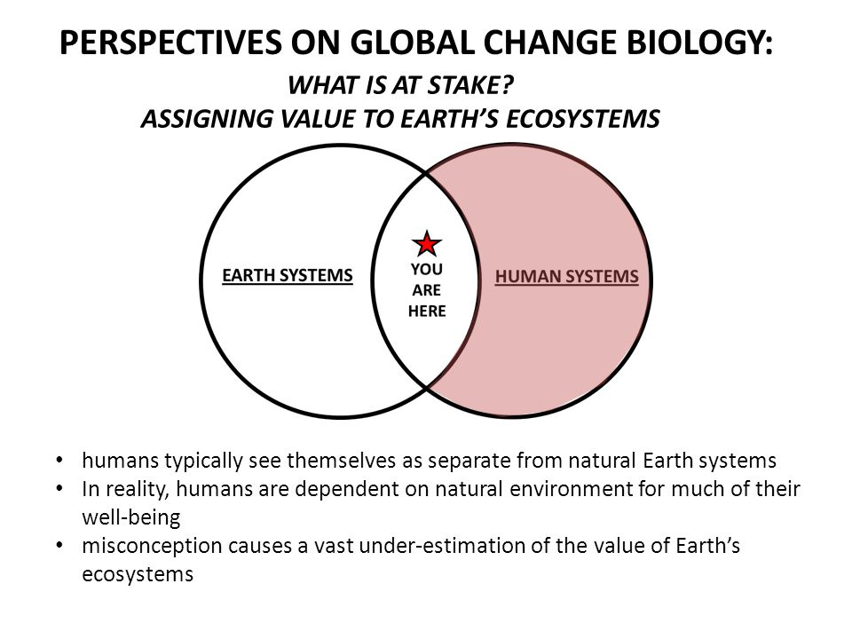 PERSPECTIVES ON GLOBAL CHANGE BIOLOGY: