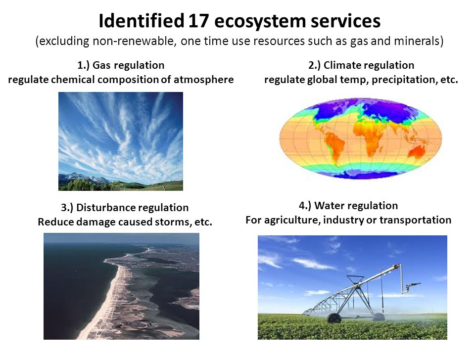 Identified 17 ecosystem services