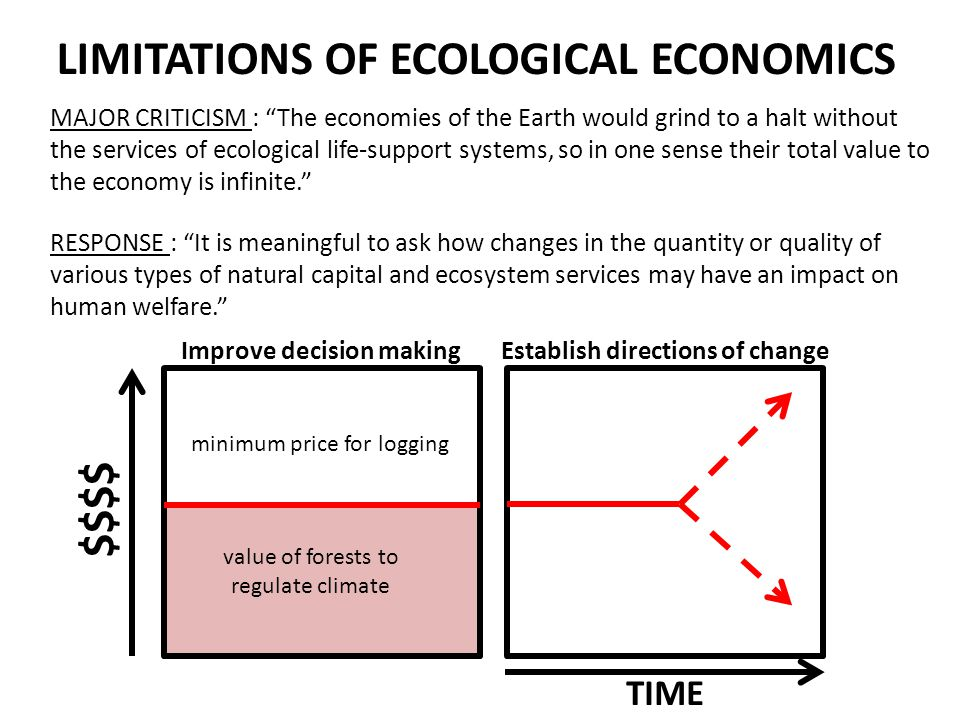 LIMITATIONS OF ECOLOGICAL ECONOMICS