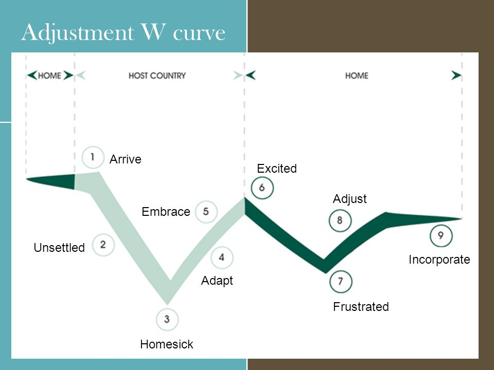 Adjustment W curve Arrive Excited Adjust Embrace Unsettled Incorporate