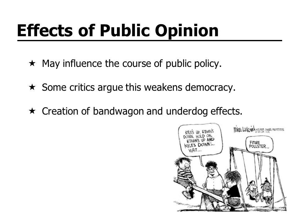 Effects of Public Opinion