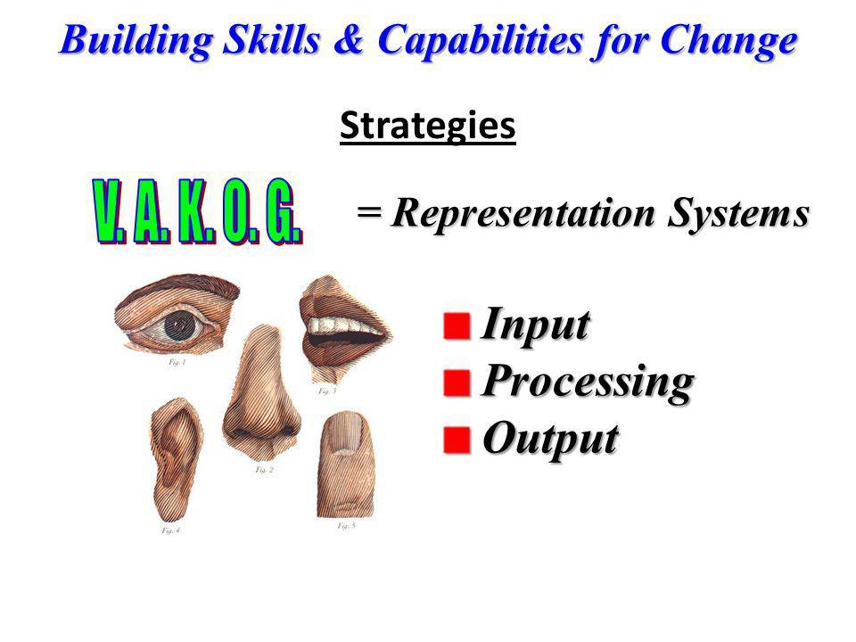 Input Processing Output Strategies V. A. K. O. G.