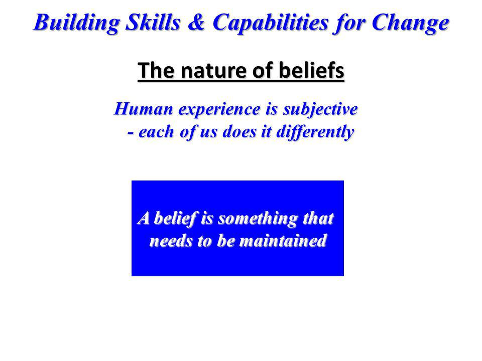 The nature of beliefs Human experience is subjective