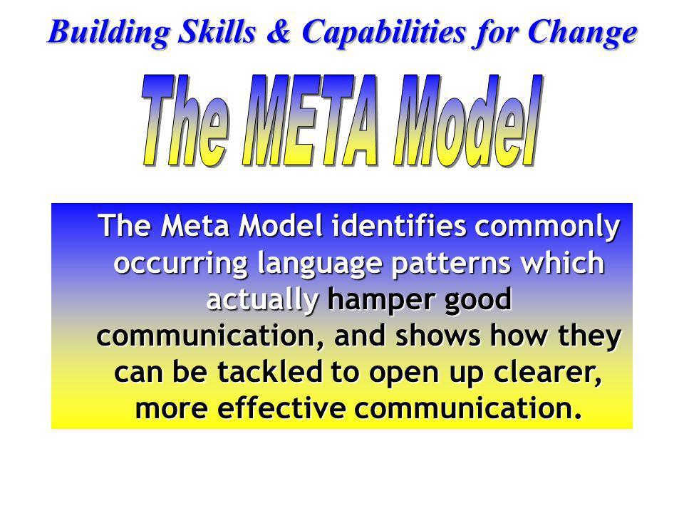 The META Model