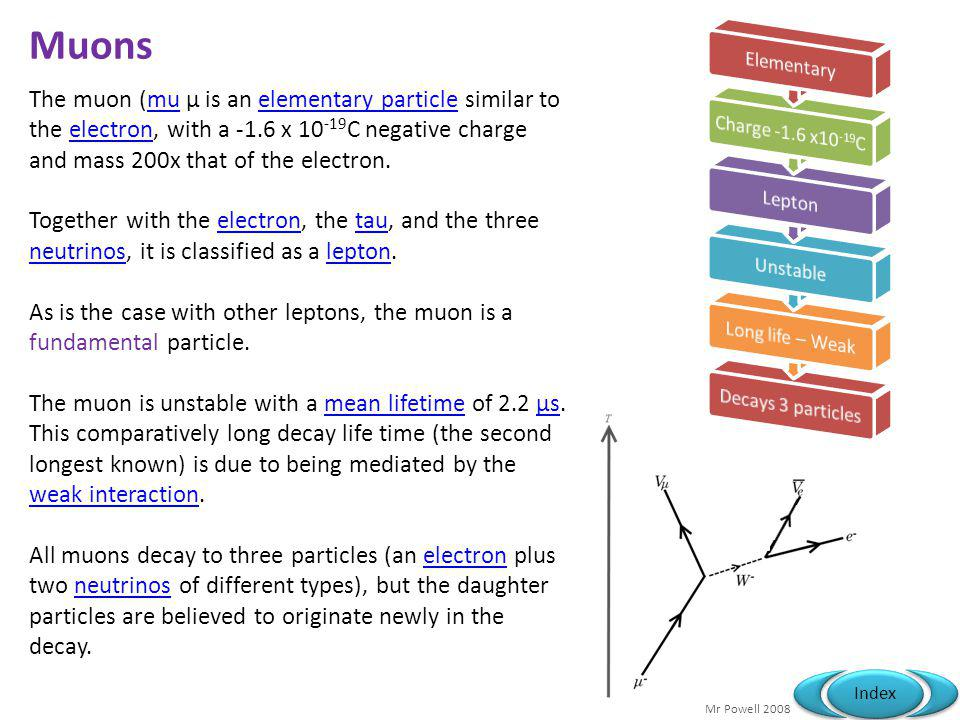 Muons Elementary. Charge -1.6 x10-19C. Lepton. Unstable. Long life – Weak. Decays 3 particles.