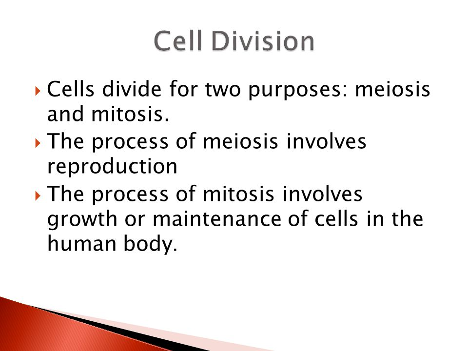Cell Division Cells divide for two purposes: meiosis and mitosis.
