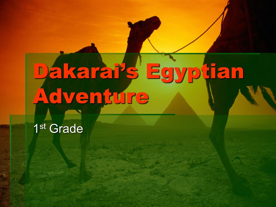 Dakarai's Egyptian Adventure