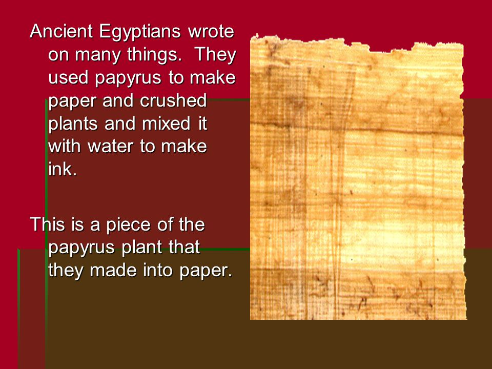 Ancient Egyptians wrote on many things