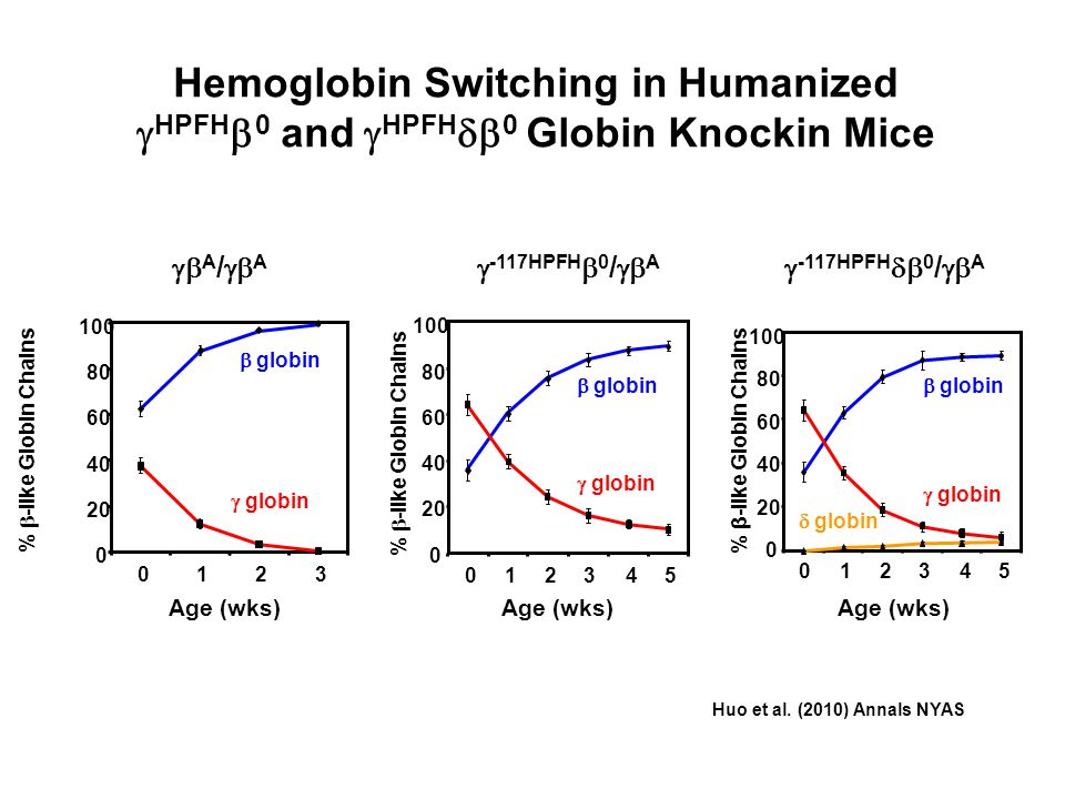 Hemoglobin Switching in Humanized