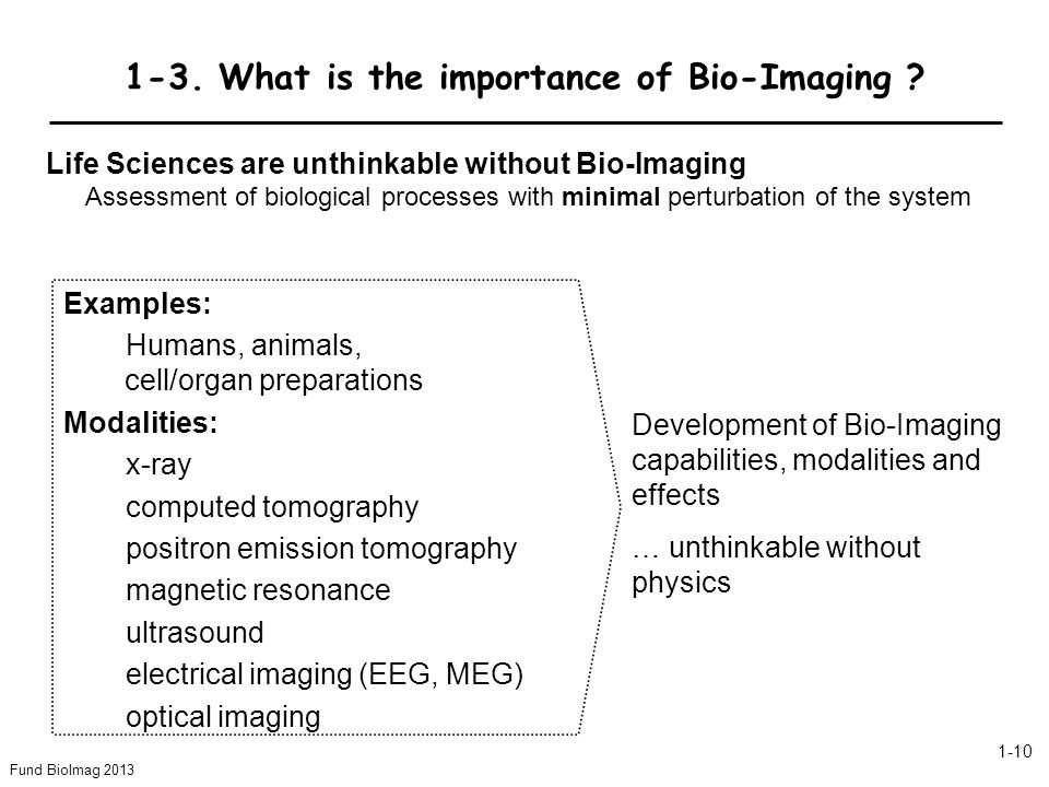 1-3. What is the importance of Bio-Imaging