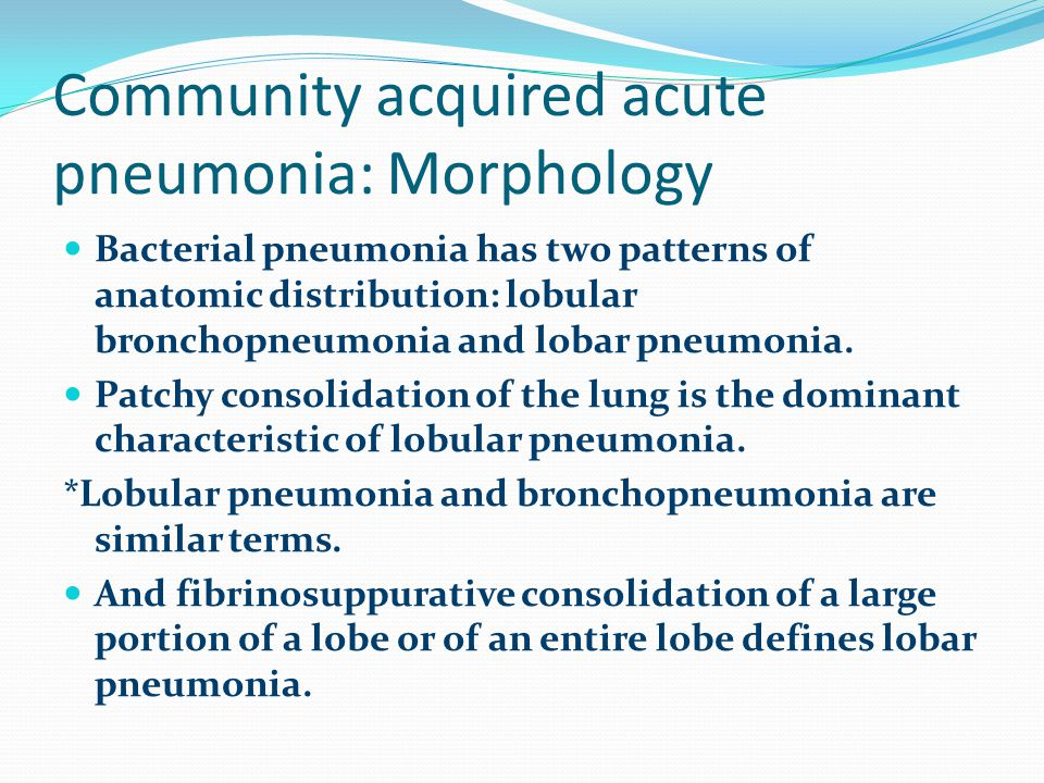 Community acquired acute pneumonia: Morphology