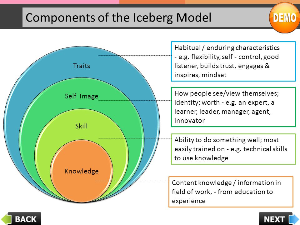 Components of the Iceberg Model