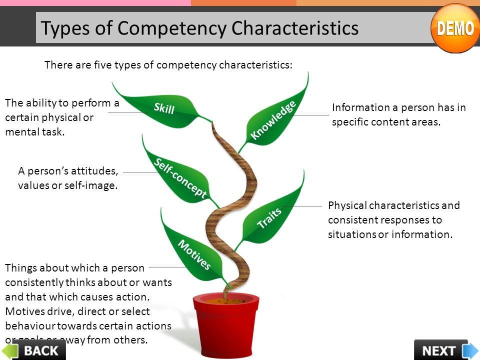 Types of Competency Characteristics