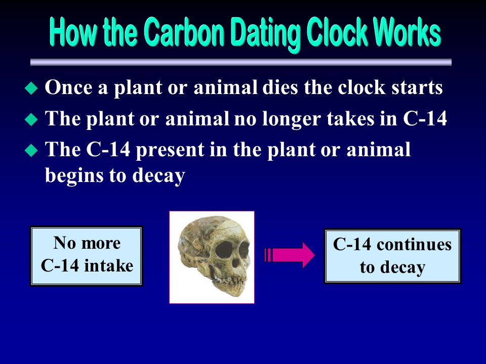 How the Carbon Dating Clock Works