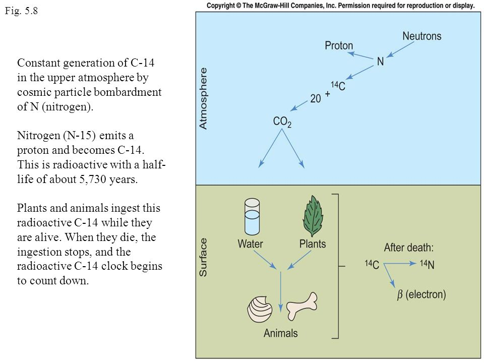 Fig. 5.8 Constant generation of C-14 in the upper atmosphere by cosmic particle bombardment of N (nitrogen).