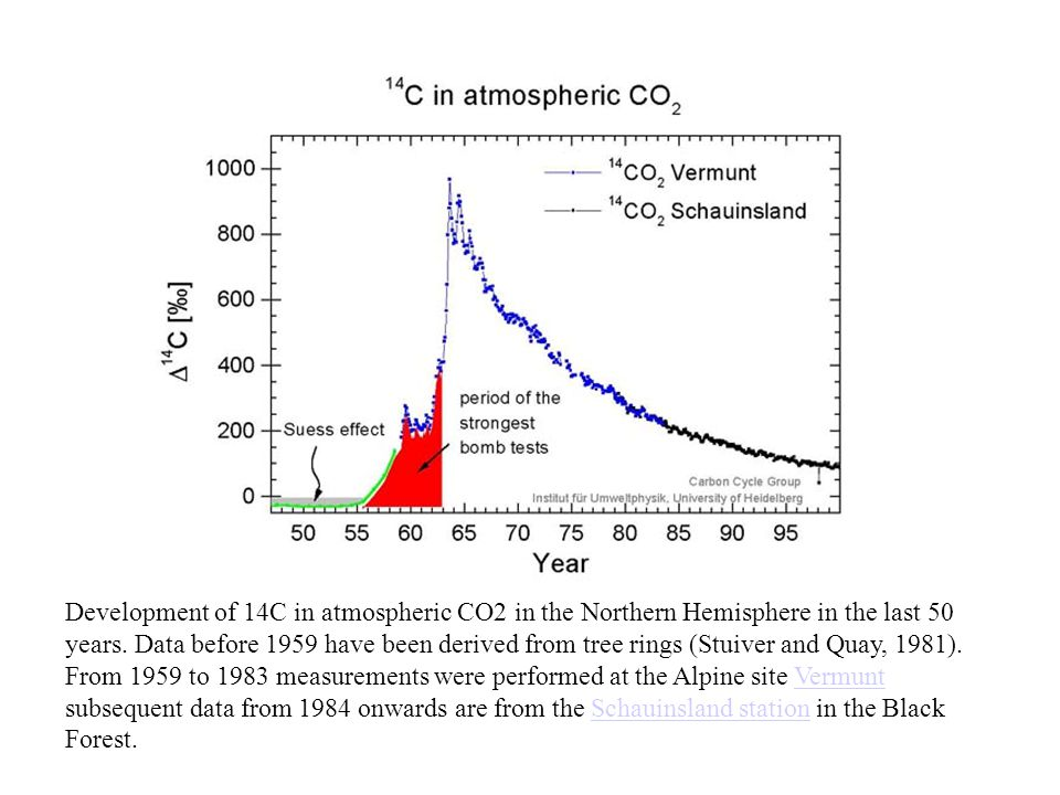 Development of 14C in atmospheric CO2 in the Northern Hemisphere in the last 50 years.