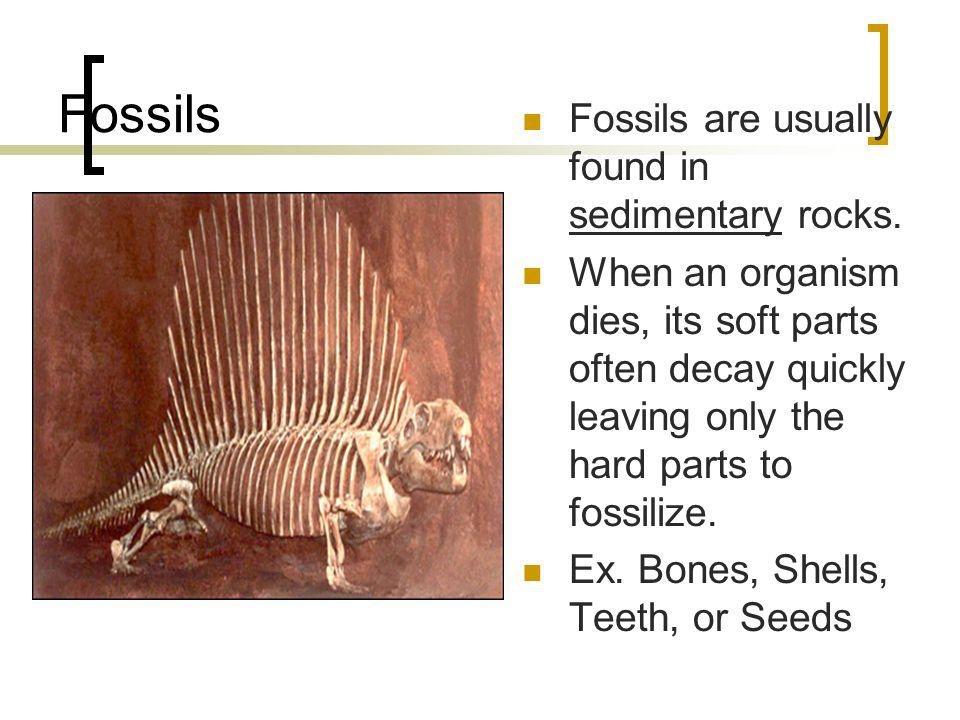 Fossils Fossils are usually found in sedimentary rocks.