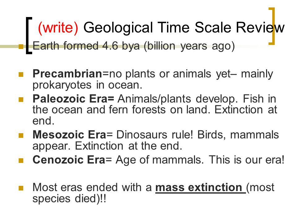 (write) Geological Time Scale Review