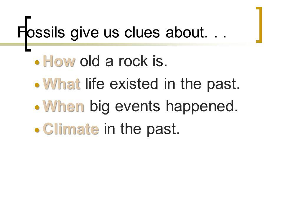 Fossils give us clues about. . .