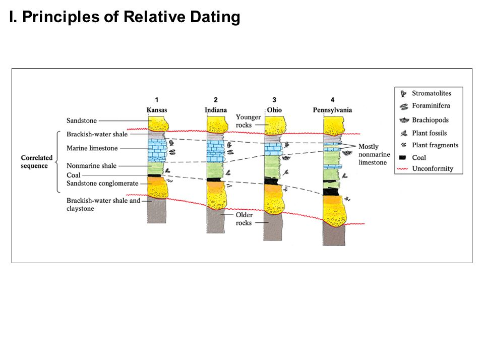 How do you use relative dating principles
