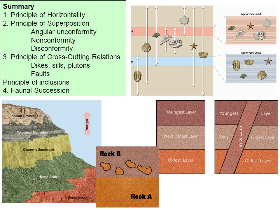 Summary 1. Principle of Horizontality. 2. Principle of Superposition. Angular unconformity. Nonconformity.