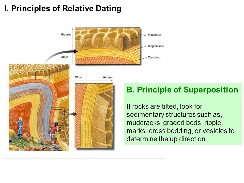 5 principles of relative dating
