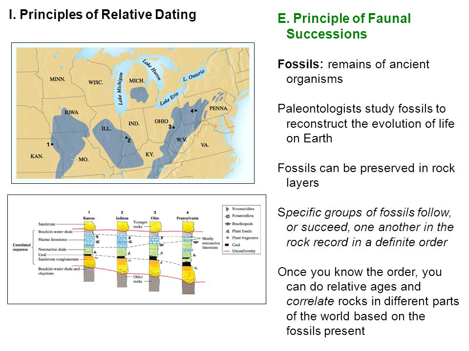 I. Principles of Relative Dating E. Principle of Faunal Successions