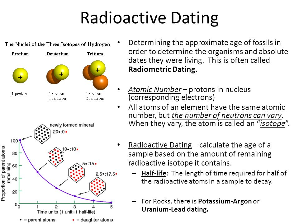 how do scientist use radioactive dating to approximate a rock age