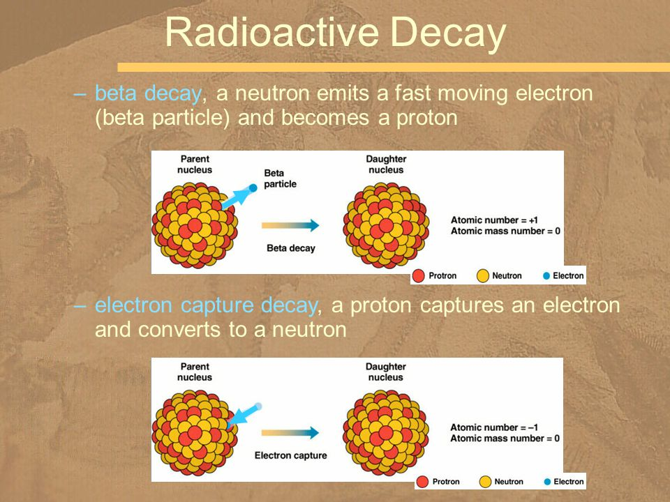 Radioactive Decay beta decay, a neutron emits a fast moving electron (beta particle) and becomes a proton.