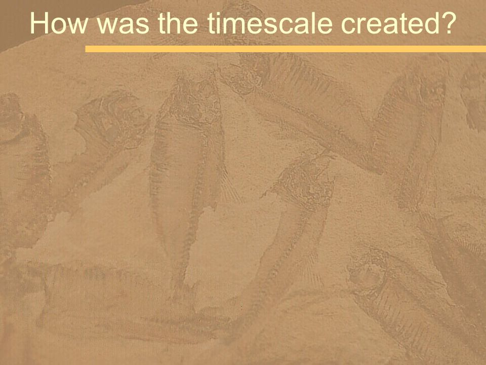 How was the timescale created