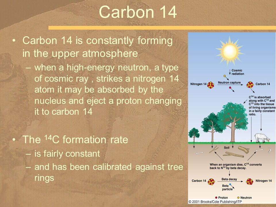 Carbon 14 Carbon 14 is constantly forming in the upper atmosphere