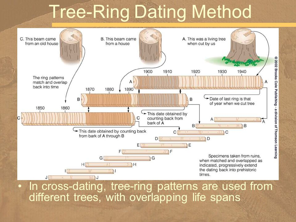 Tree-Ring Dating Method