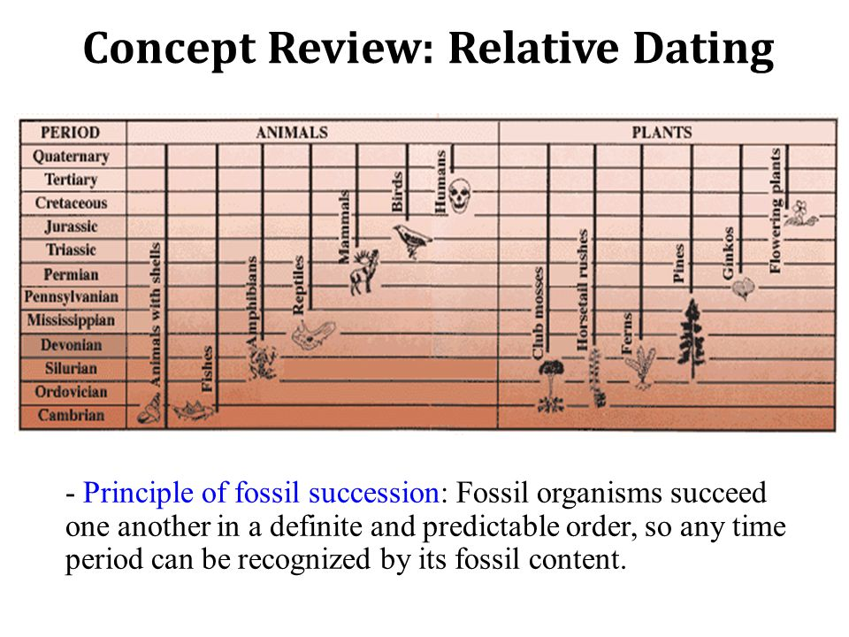 Concept Review: Relative Dating