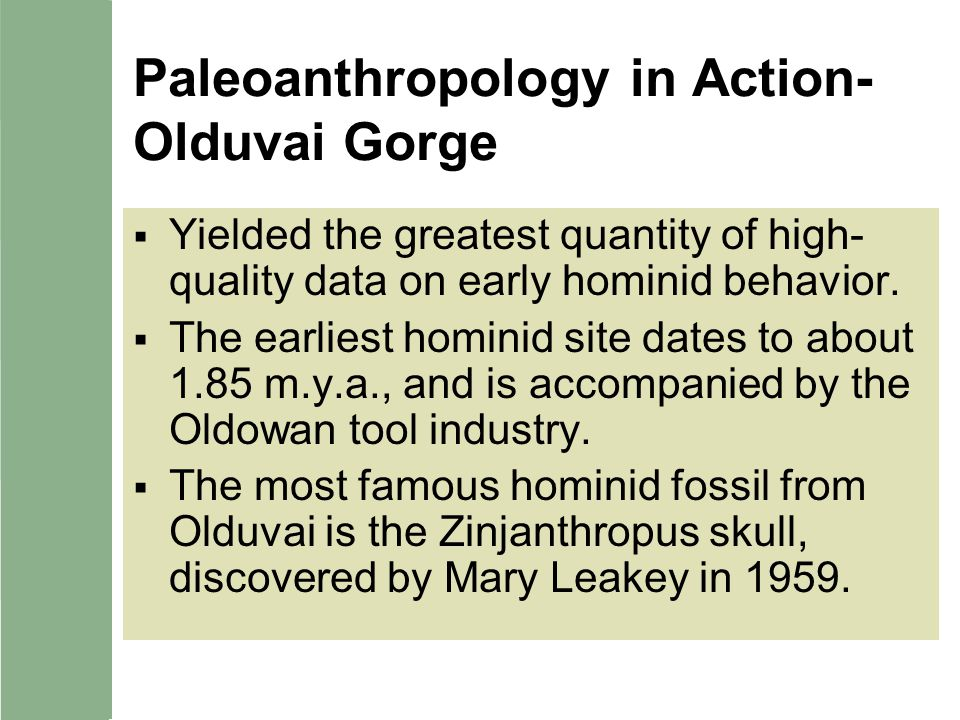 Paleoanthropology in Action-Olduvai Gorge