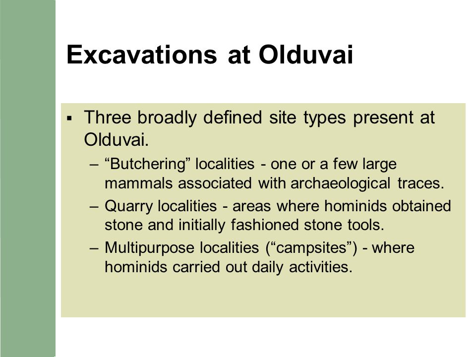Excavations at Olduvai