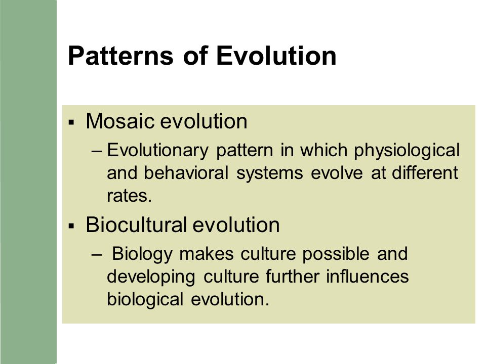 Patterns of Evolution Mosaic evolution Biocultural evolution