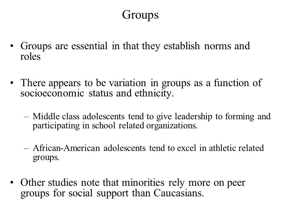 Groups Groups are essential in that they establish norms and roles