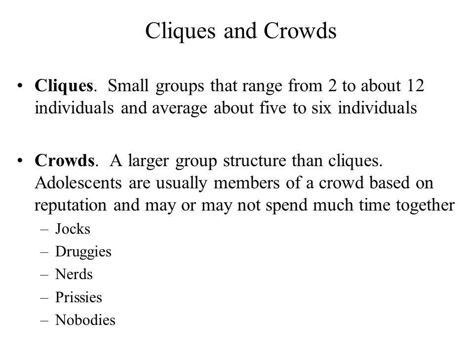 Cliques and Crowds Cliques. Small groups that range from 2 to about 12 individuals and average about five to six individuals.