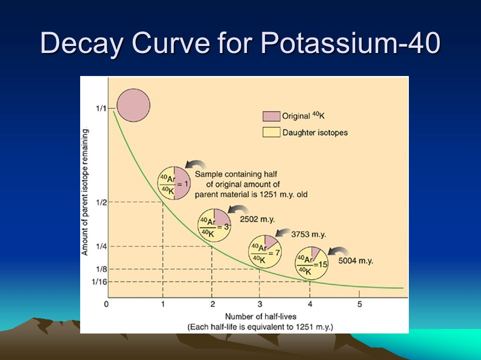 Decay Curve for Potassium-40