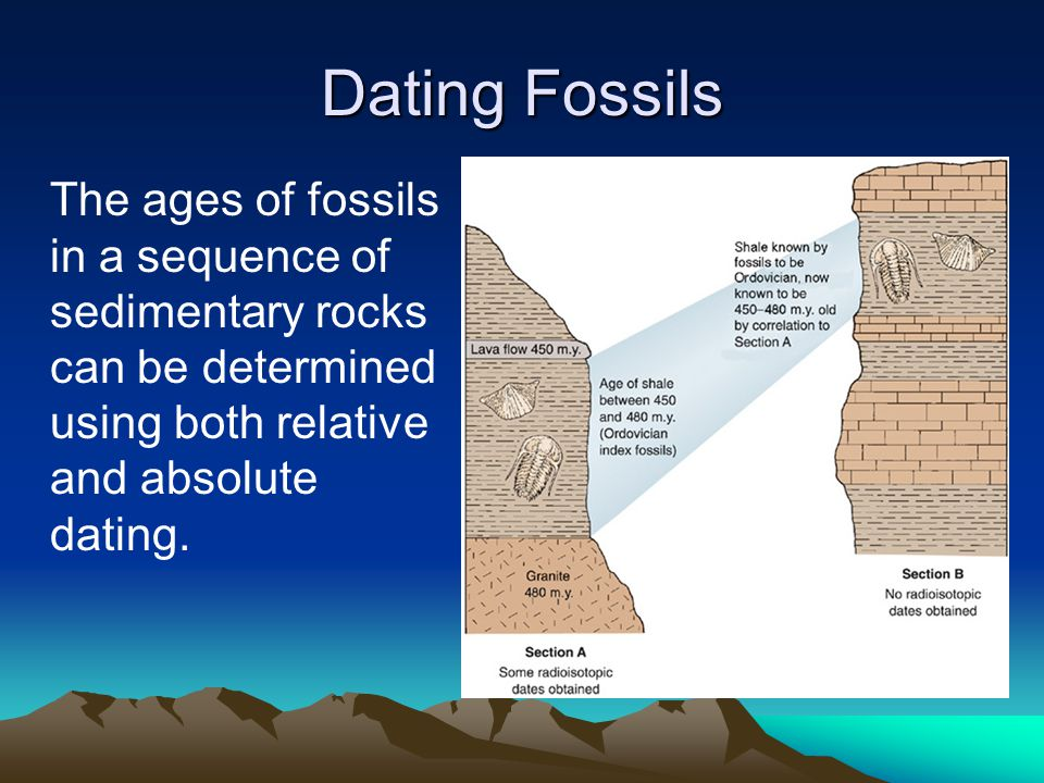 Dating Fossils The ages of fossils in a sequence of sedimentary rocks can be determined using both relative and absolute dating.
