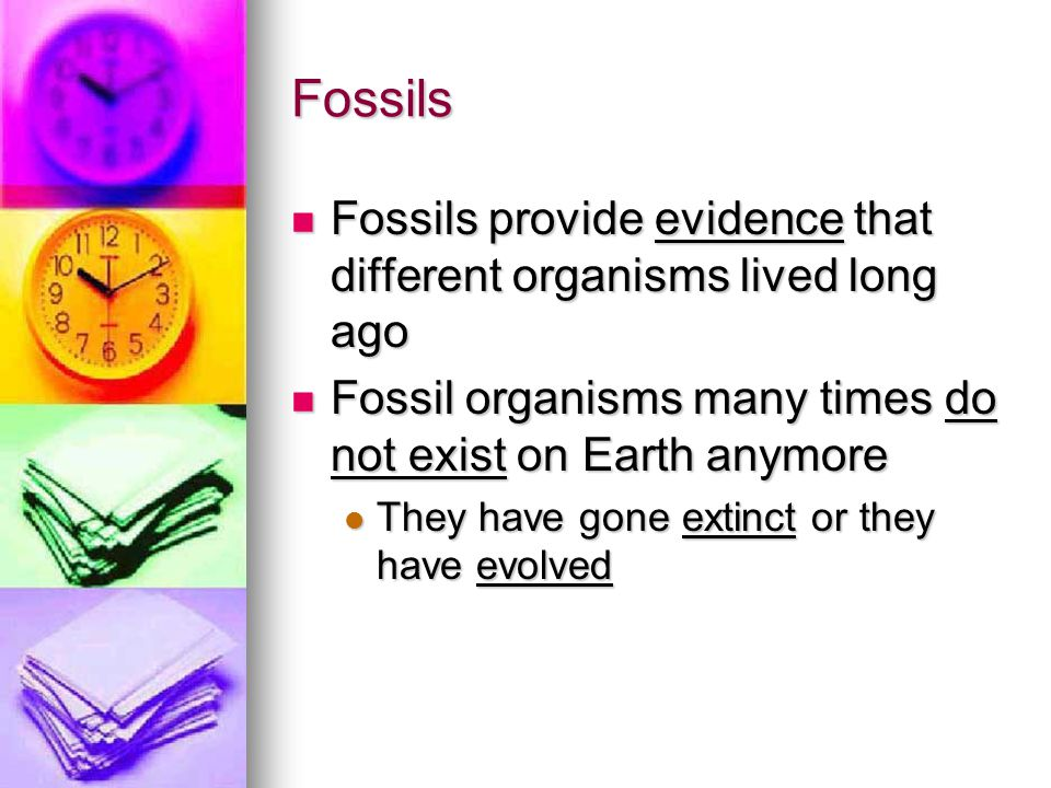 Fossils Fossils provide evidence that different organisms lived long ago. Fossil organisms many times do not exist on Earth anymore.