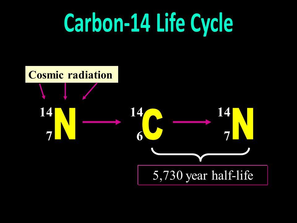 Carbon-14 Life Cycle N C N 14 7 14 6 14 7 5,730 year half-life