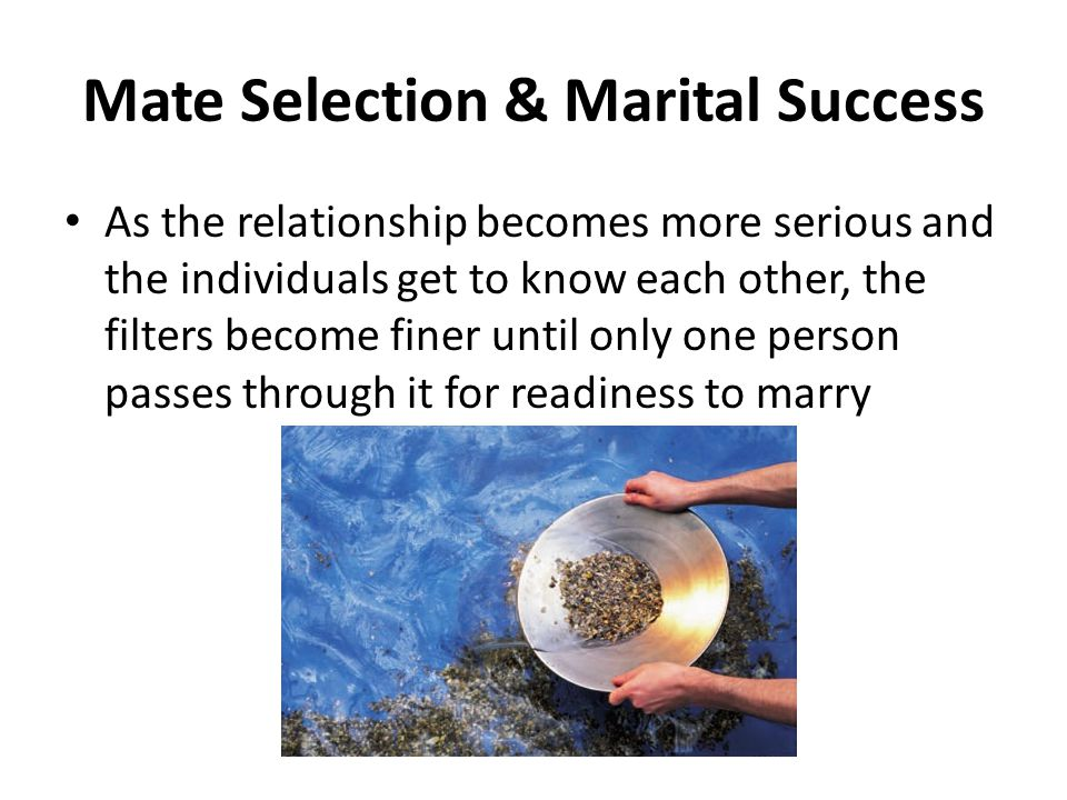 mate selection criteria for marital success Women have two, conflicting instincts when choosing men  you sing to your  mate and your mate sings back to let you know their location  the average  man now first lives with a woman, either in marriage or as an unmarried couple,  for the first time  art, entertainment, religion, and reproductive success are  entwined.