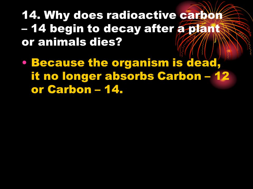 14. Why does radioactive carbon – 14 begin to decay after a plant or animals dies