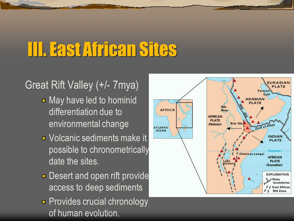 III. East African Sites Great Rift Valley (+/- 7mya)