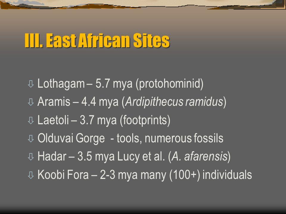 III. East African Sites Lothagam – 5.7 mya (protohominid)