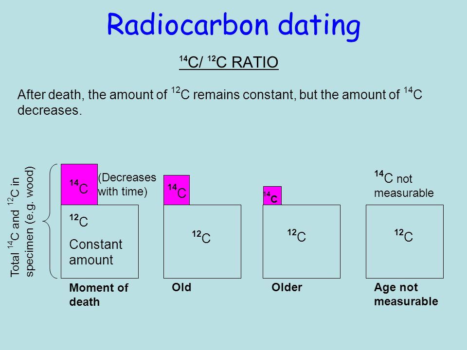 Radiocarbon dating 14C/ 12C RATIO. After death, the amount of 12C remains constant, but the amount of 14C decreases.