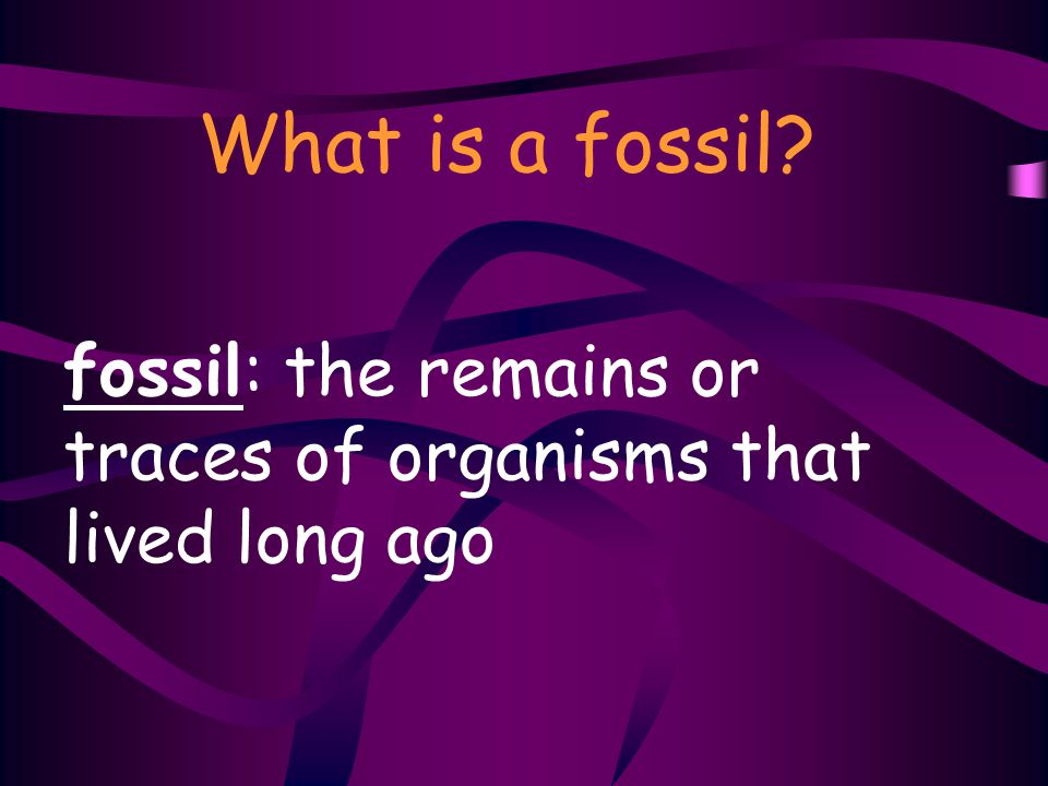 fossil: the remains or traces of organisms that lived long ago